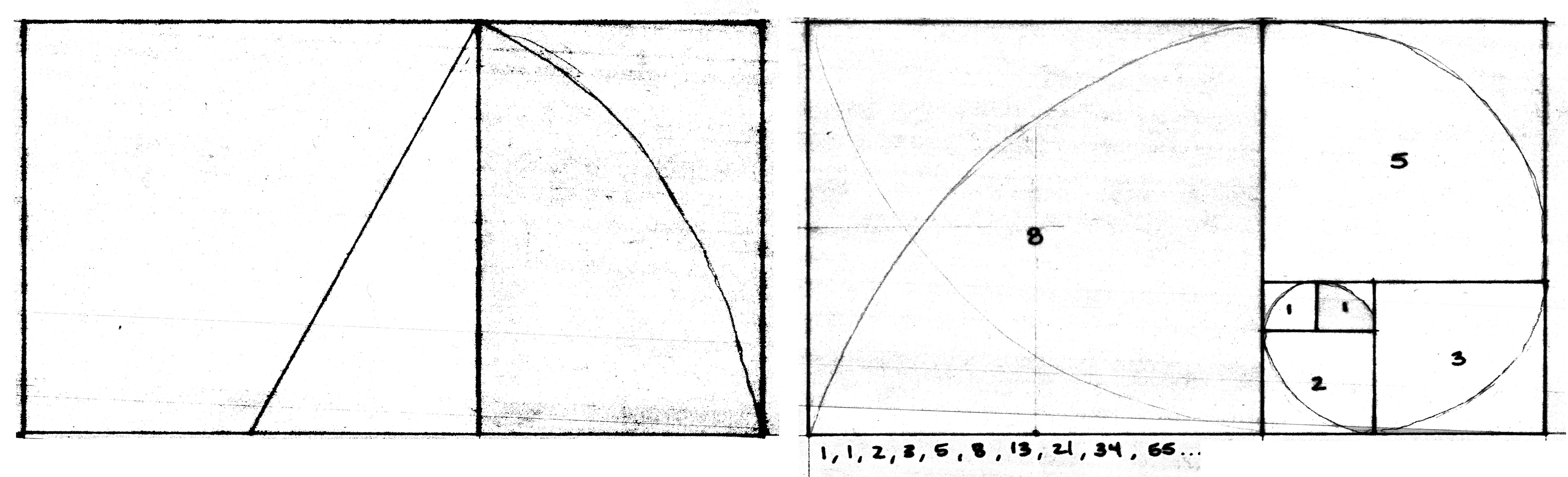 Graduate master s thesis architecture portfolio for Fibonacci architecture
